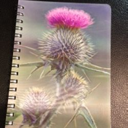 3d-image-notebook-spear-thistle