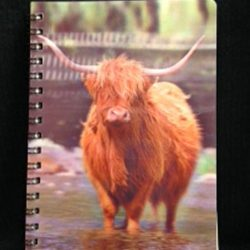 3d-image-notebook-highland-cow-in-water